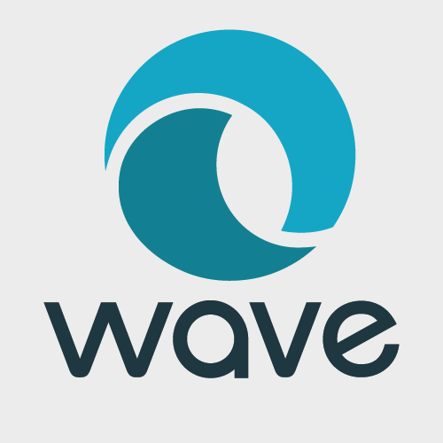 wave accounting is small business software